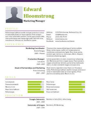 Primer pravljenja CV-a
