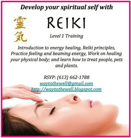 a light worker's diary interested in reiki level 1 training