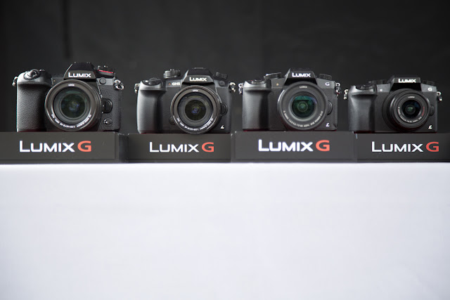 Park Cameras Blog | Panasonic Lumix | Best Cameras for Wildlife Photos