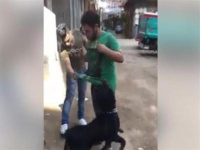 القبض على سيد سيكا في واقعة الكلب
