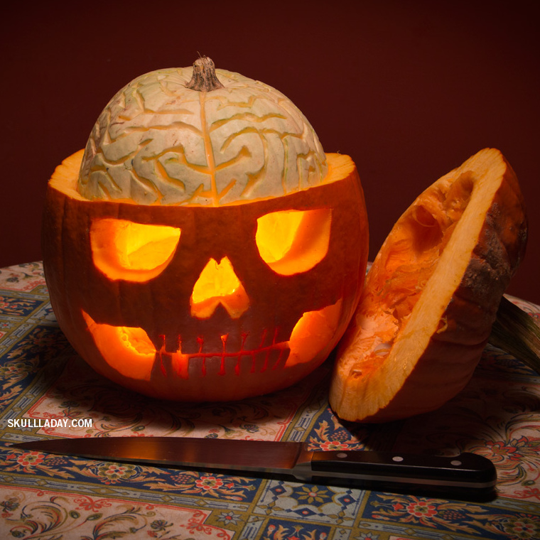 Halloween pumpkin, anatomical skull with brain - Noah Scalin