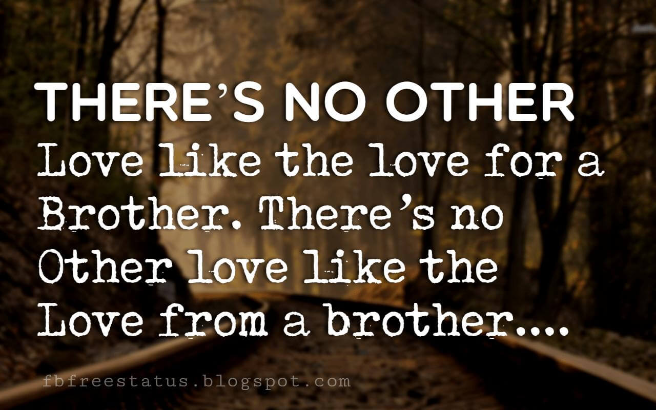 inspirational brother quotes, There's no other love like the love for a brother. There's no other love like the love from a brother.