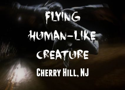 Flying Human-Like Creature - Cherry Hill, NJ