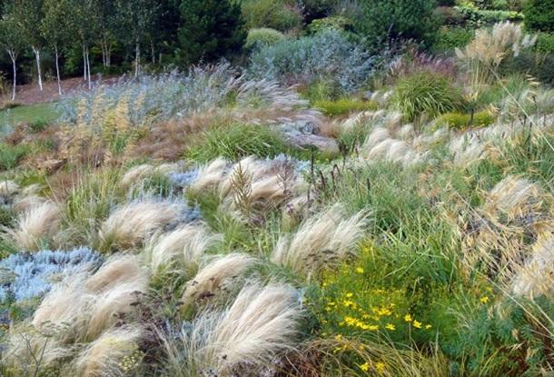 Сад трав