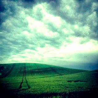 Sembrado de agricultura extensiva de secano.  Muchos ven estos paisajes hermosos y los  consideran naturaleza. La realidad es que estos  llanos, cuando son tratados con agroquímicos,  no permiten ningún tipo de vida salvaje. Las hierbas son quemadas con herbicidas  y los insectos y demás animales son envenenados  con otros productos. La deforestación en estos  lugares provoca la rápida evaporación del agua  y causa cambios extremos de temperatura como en los desiertos.