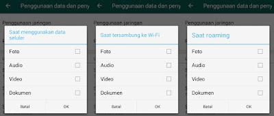 Pengaturan Download Otomatias WhatsApp