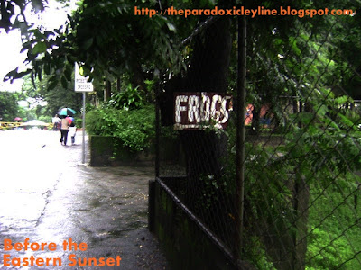 UP Diliman - where is the frog?