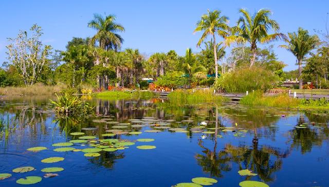 Jardim Botânica de Naples na Flórida