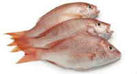 fish benefits