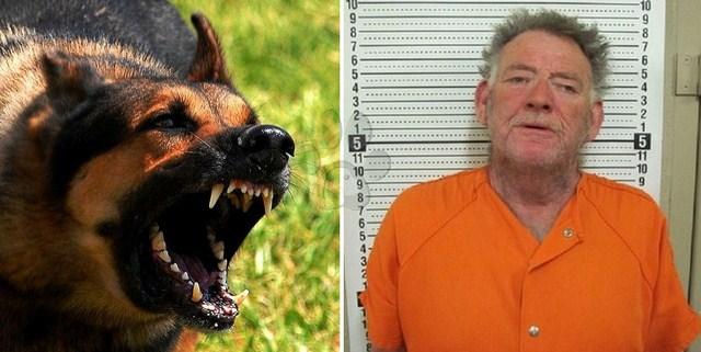 Perro salvó a su hermana adolescente de ser violada mordiendo el miembro del violador