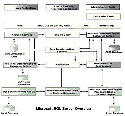 [Hệ quản trị cơ sở dữ liệu] Các thành phần cơ bản của SQL server