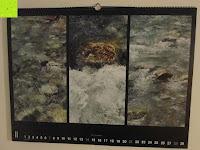 Februar: Laurent Pinsard 2016 - Triplets Posterkalender Naturkalender quer - 64 x 48 cm