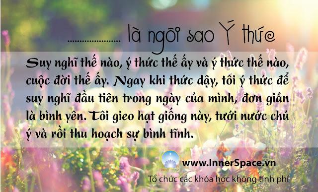 TOI-LA-NGOI-SAO-BINH-YEN-Y-THUC