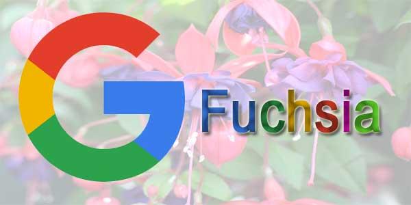 Imagen Do Fuchsia, O Novo Sistema Do Google o substituto do Android