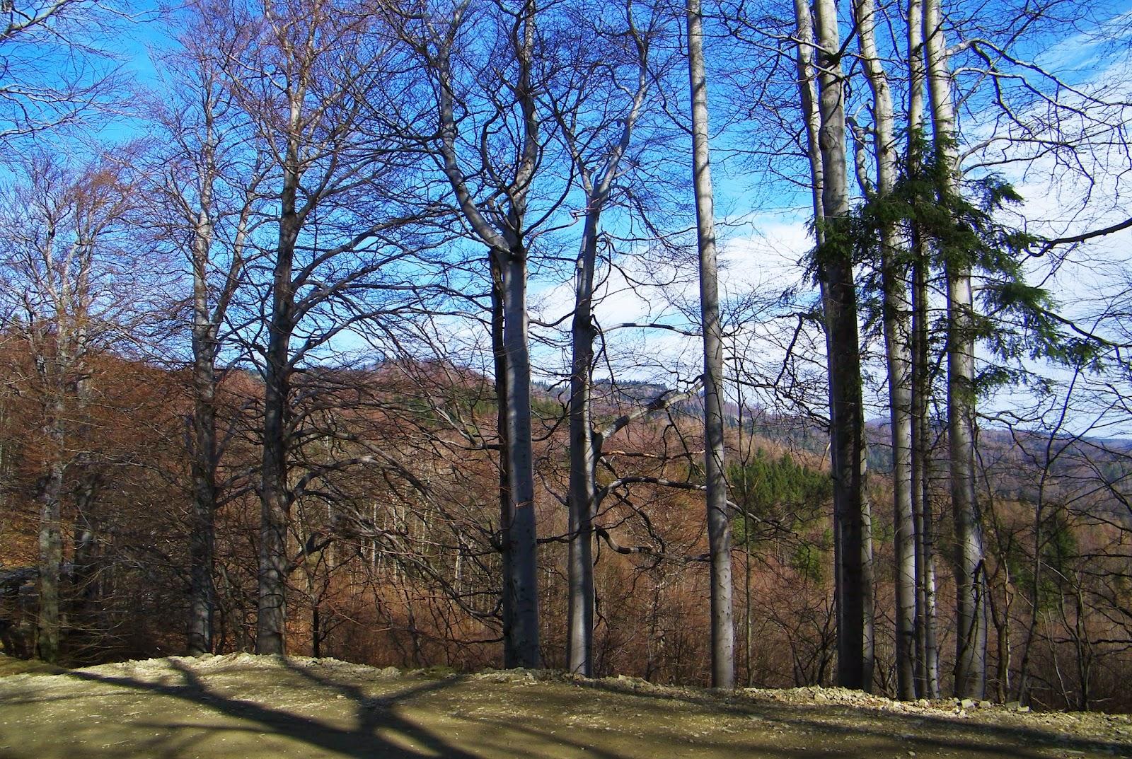 Blog turystyczny - blog górski
