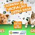 Campanha de vacinação contra a raiva em cães e gatos inicia dia 3 em Jaguarari