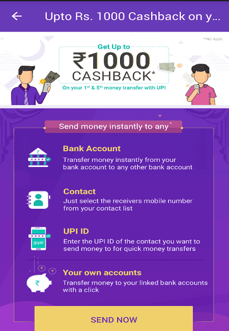 phonepe 1000 cashback offer