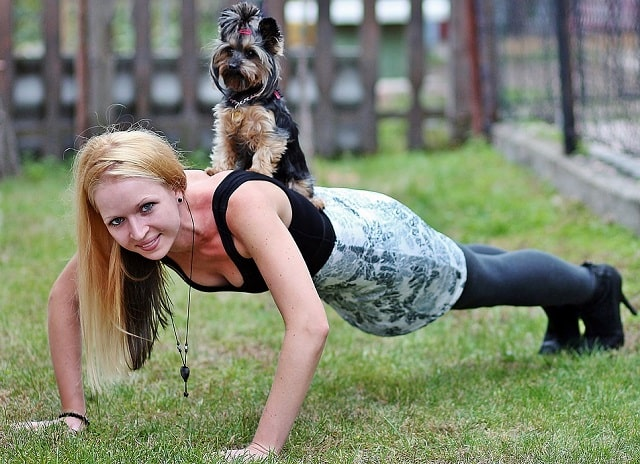 pets power improve lifestyle health workouts dog fitness