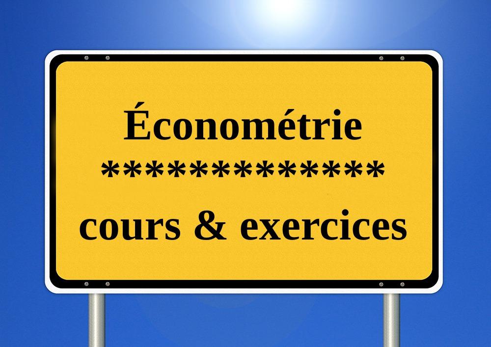 Téléchargez PDF économétrie cours + exercices