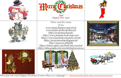 , Feliz Navidad, China Sheng Tan Kuai Loh, Feliz Navidad para todos, Feliz Navidad!, Feliz Navidad, Felices Pascuas, Felicidades, Filis Pasgua, Merry Christmas, Frohe Weihnachten