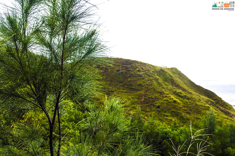 Experience Antique: Mararison Island