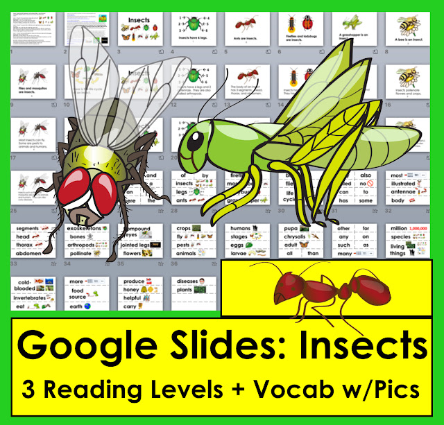 https://www.teacherspayteachers.com/Product/Insects-Google-Slides-Presentations-3-Levels-Illustrated-Animated-Vocab-3214803