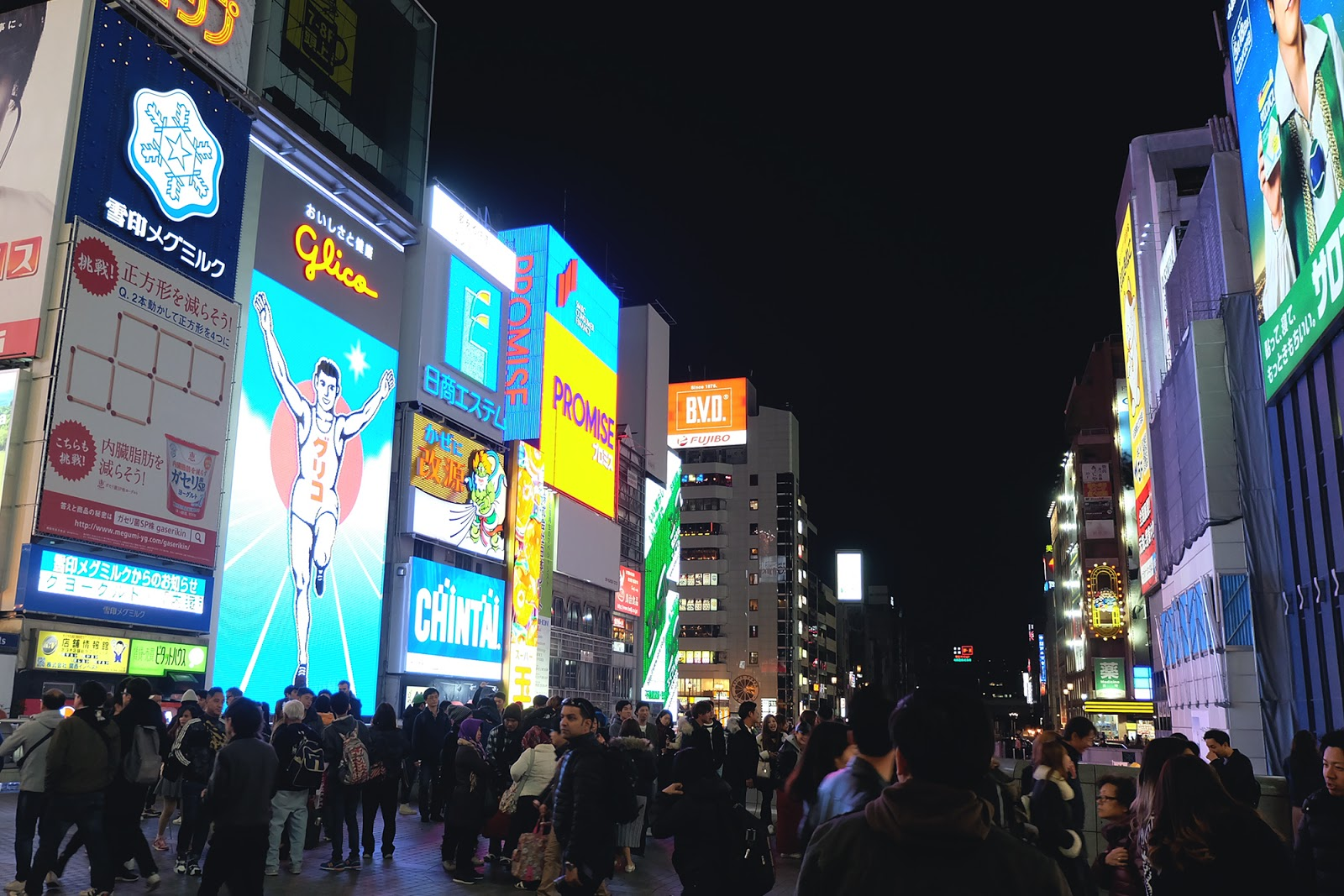 Dotonbori Street Osaka | www.bigdreamerblog.com