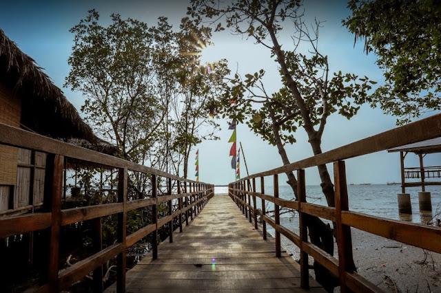 Tempat Wisata Mangrove Grinting atau Alas Jaran Brebes