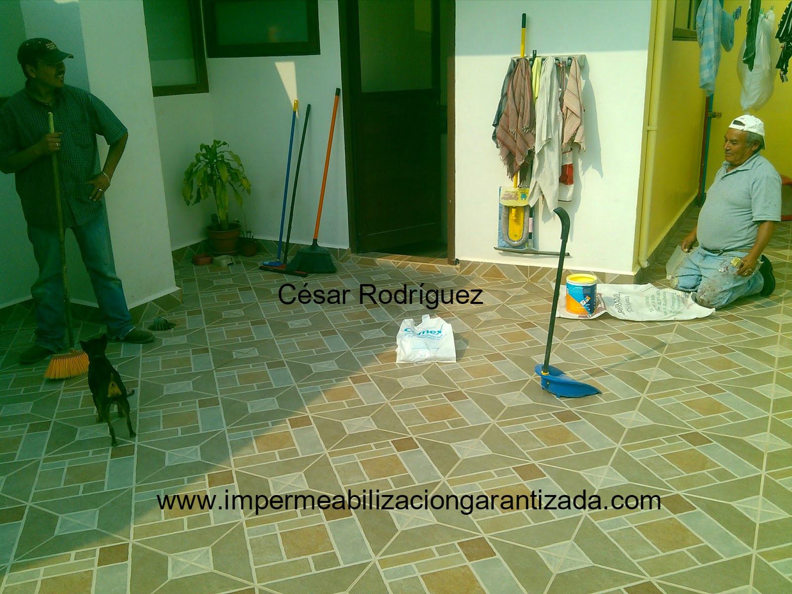 Impermeabilizaci n garantizada de azoteas y techos 2010 - Impermeabilizantes para terrazas ...