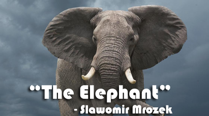 The-Elephant-By-Slawomir-Mrozek-Questions-And-Answers