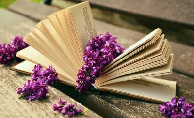 12 Nilai Kehidupan Dalam Cerpen Novel Beserta Contohnya Kokoh