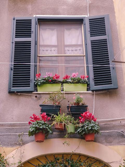 Davanzale fiorito, Sassari