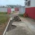 Grupo de torcedores do Sergipe inicia reformas do Estádio João Hora