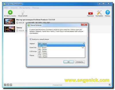 4K Video Downloader 4.2.0.2175 - Умный режим - Формат видео