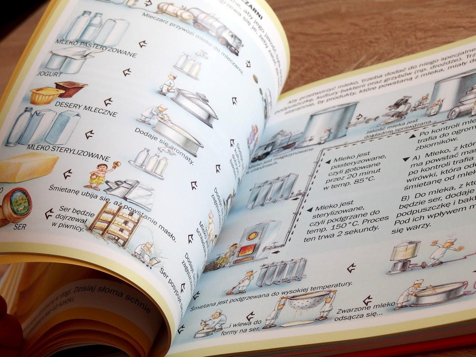świat w obrazkach książka