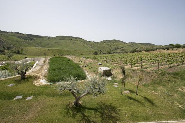 Azienda Judeka