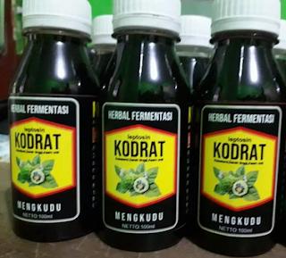 obat herbal kolesterol tinggi paling ampuh dan aman