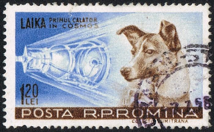 Tem bưu chính România năm 1959 vẽ hình ảnh cô chó Laika và vệ tinh Sputnik 2.