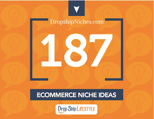 dropshipping niches