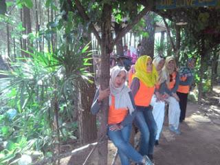 Foto Kelima Di Hutan Pinus Precet, Sumbersuko, Wagir, Malang