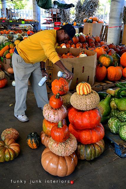 unique pumpkins in a Nashville farmer's market