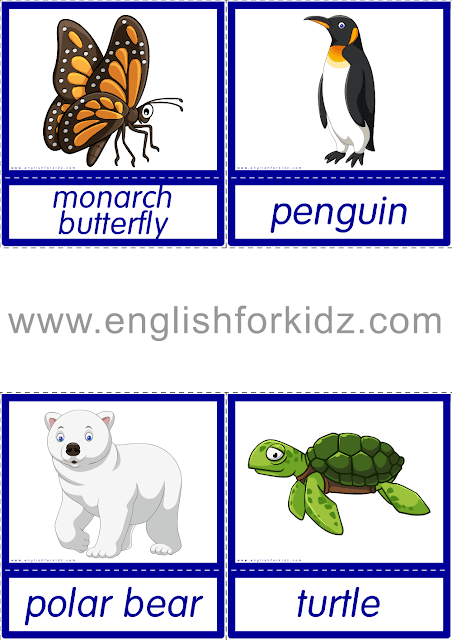 Animals endangered by global warming and resulting climate change - printable ESL flashcards