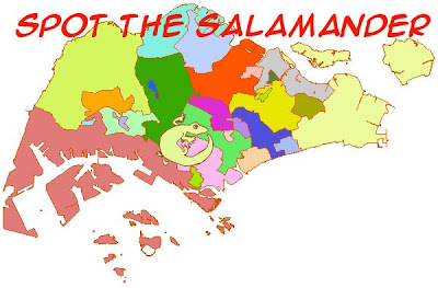 The Gigamole Diaries: gerrymander, salamander....