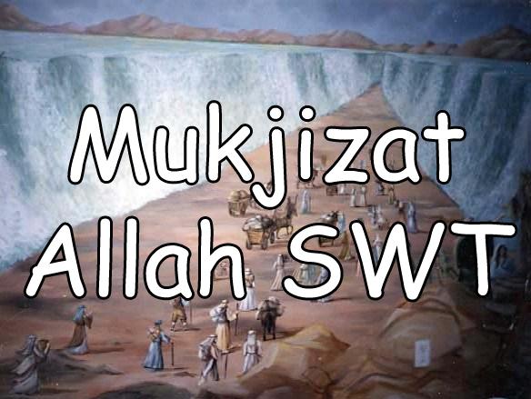 Hasil gambar untuk Allah Memberi Mukjizat Kepada Nabi Saleh A.S.