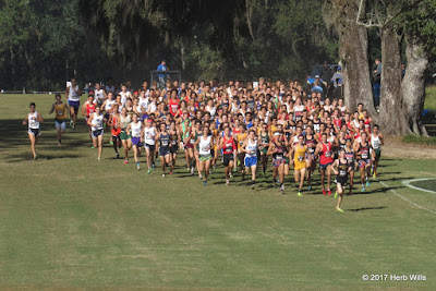 2017 FHSAA State Cross-Country Championship