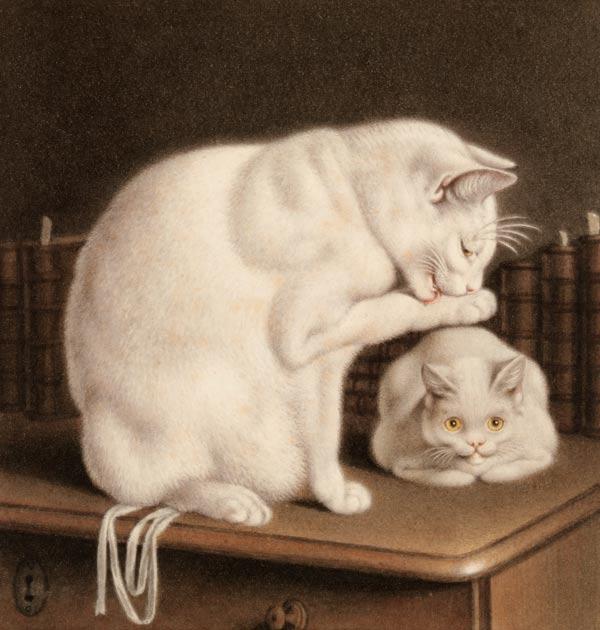 Grace Elliot - blog : Gottfried Mind: The Cat Raphael