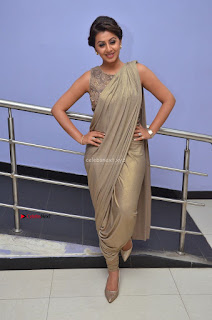 Nikki Galrani in Saree 011.JPG