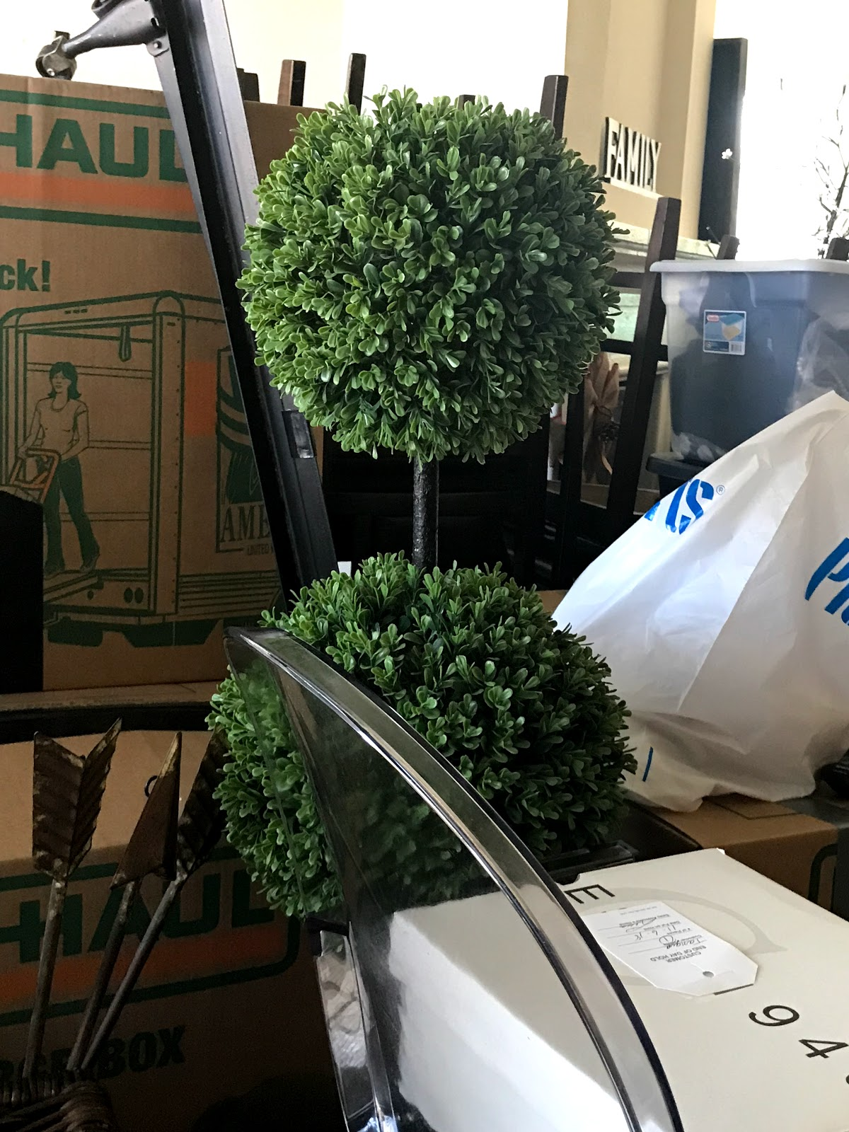 Image: Boxes, Plants packed to move to new apartment