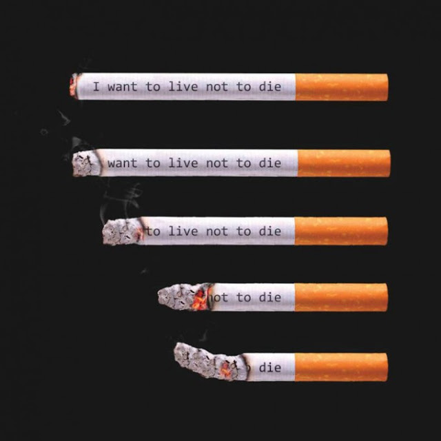 bukti bahwa merokok tidak menyebabkan penyakit dan juga menyebabkan kematian