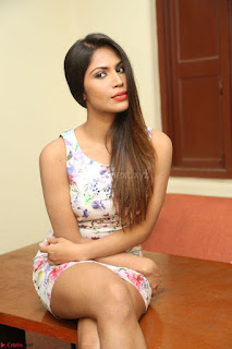 Nishi Ganda stunning cute in Flower Print short dress at Tick Tack Movie Press Meet March 2017 007.JPG